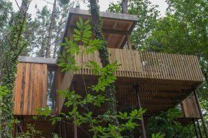casa del árbol en Lugar Ousensede, Santo Ourente