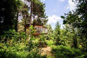 escapada romántica en cabañas en los árboles en cataluña