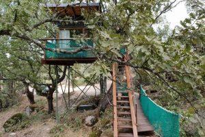 cabaña aventura para dormir en los árboles