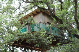 cabañas en los árboles de cáceres extremadura