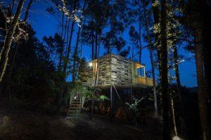 casa del árbol en Santo Ourente