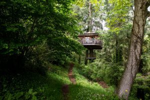 hoteles cabañas en los árboles en españa