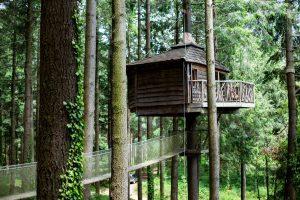 hoteles cabañas en los árboles