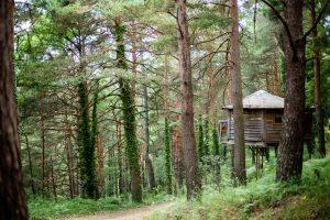 cabaña del bosque en cataluña